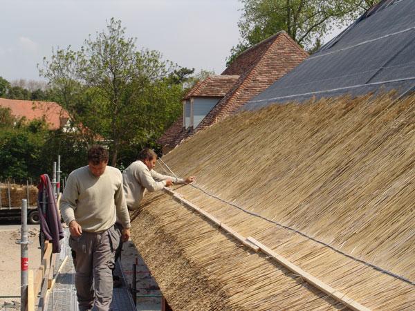 Rieten daken - Pergola dakbedekking ...